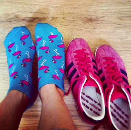 Adidas Gazelle's never looked prettier before. These Flamingo socks belong to @sheri_peri / Sheral Pereira