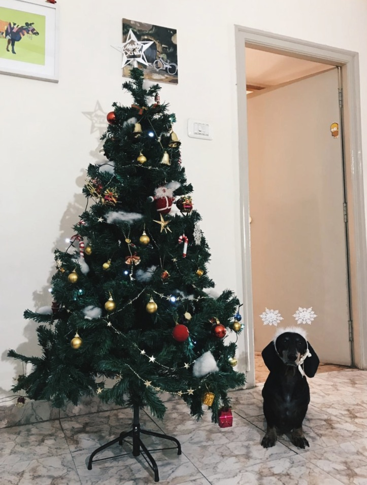 Scratch Christmas Photo