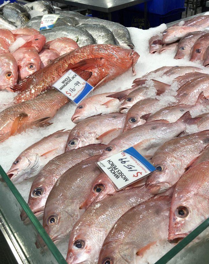 Morgans Seafood Brisbane