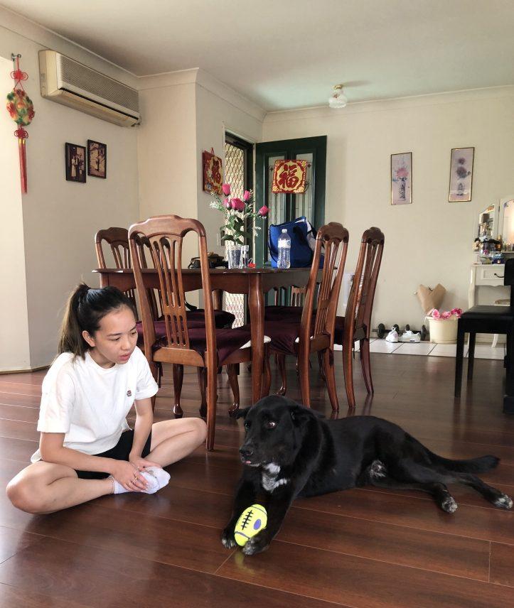 Connie Yan Dog